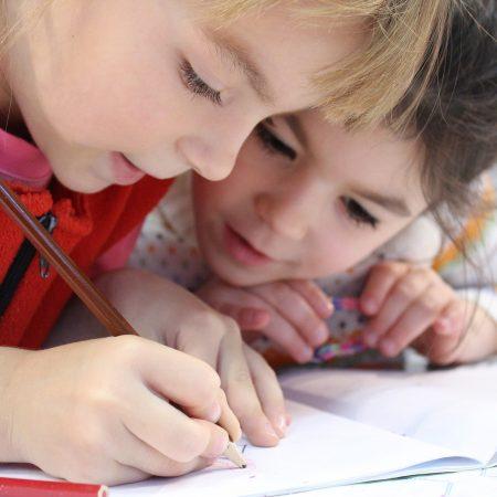 Eğitim Nedir, Türleri ve Eğitimin Önemi?